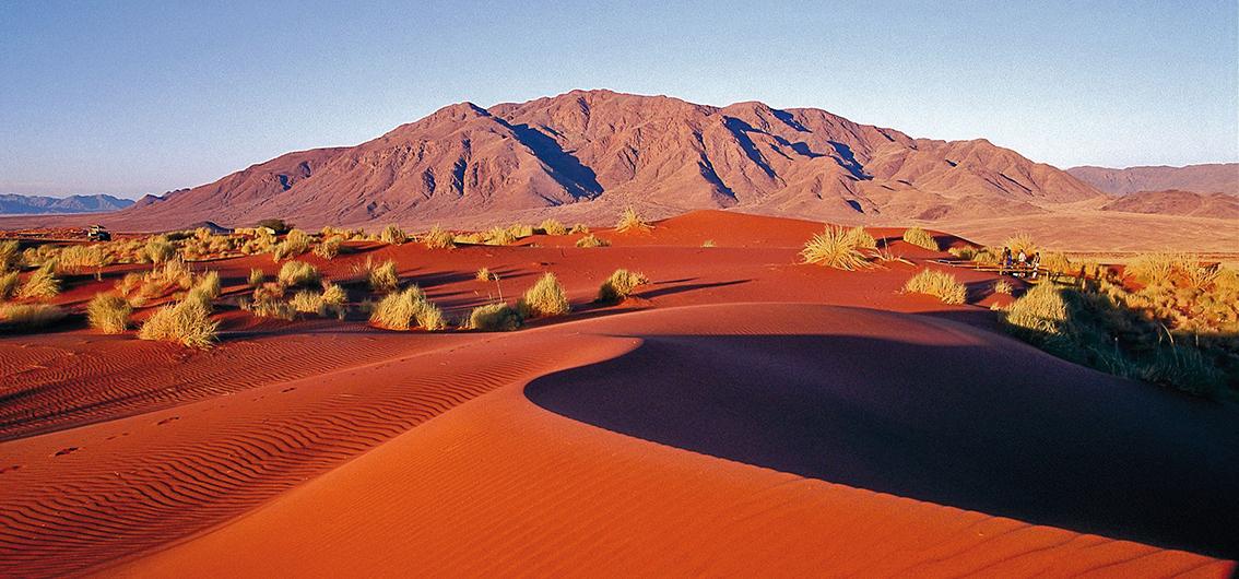 Day 7  Sand Dune Giants