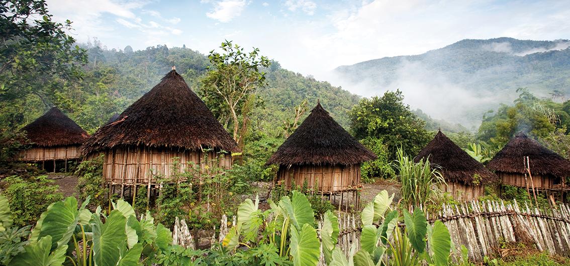West-Papua: Stammesfeste und Paradiesvögel (2020/2021)